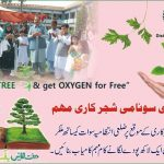 Plant a Tree and get oxygen for free