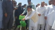 "Inaugural event of Prime Minister's Monsoon Plantation ""Plant for Pakistan"" at University"