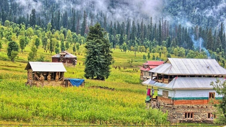 Some beautiful shots early morning of Arang Kel the beauty of Kahsmir Heaven on