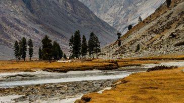 Autumn, the year's last loveliest smile.Dishai meadow, Swat..