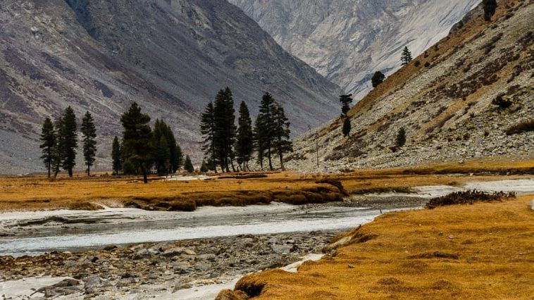 Autumn, the year's last loveliest smile.Dishai meadow, Swat..