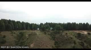 ڈی سی سوات  جنید خان  کی ہدایت پر اے سی چارباغ نے لوکل کمیونیٹی اور لیویز اہلکاروں کے ساتھ مل کر تو