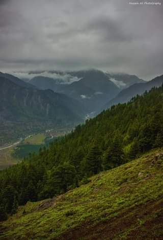 May be an image of mountain, nature, tree and sky