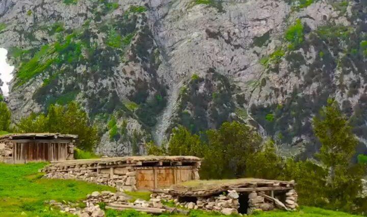 Chukail Meadows , Swat ValleyKhwaja Saeed